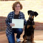 Certified Amerian Kennel Club Canine Good Citizen- Rio- Doberman Pinscher