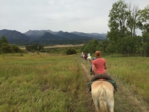 Exploring the wilderness on horseback- Alpine, WY.