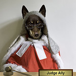 Dog-Dressed-as-Judge. CPT expert witness services.