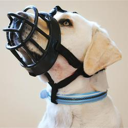 A dog wearing the Ultra Basket Muzzle