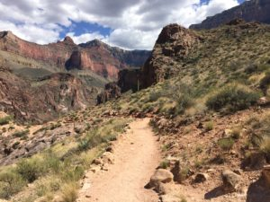 Grand Canyon- A view down the Bright Angel Trail about half-way into the canyon.