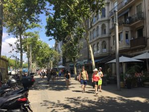 Passeig de Joan de Borbó- However, Barcelona's main streets are much wider, both for automobiles and foot traffic.
