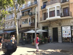 Passeig de Joan de Borbó- The main streets usually are designed with shops or restaurants at street level and several floors of residential apartments above, where the edifices of the buildings usually have great detail and aesthetic appeal.