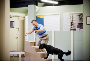 Mark Training Watson on the MRI Stairs- Canine Neuroscience