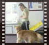 Patricia King- CPT Dog Trainer