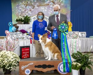 Obedience- CPT Trainer Karen Smalley wins the beautiful (and long) High Combined award at The Peach Blossom Cluster dog obedience trial.